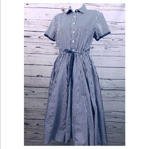 Orvis Fit and Flare Blue And White Pinstripe Dress